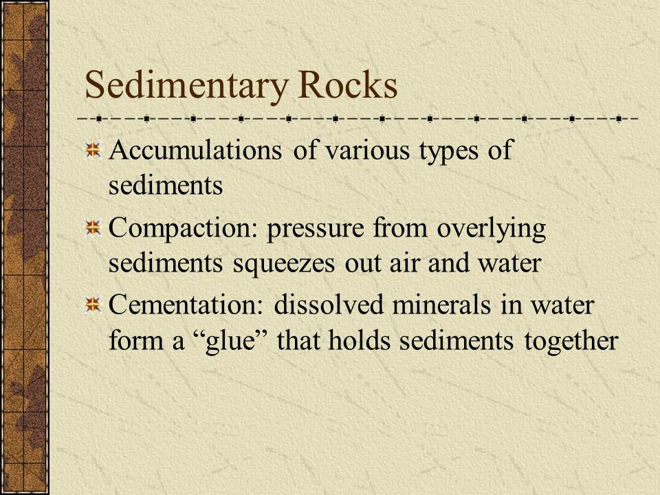 Organic Sedimentary Rocks Organic: formed from the remains of living things Ex: coal