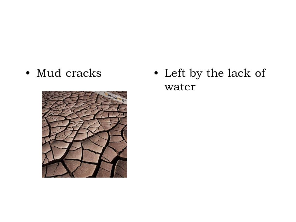 Mud cracksLeft by the lack of water
