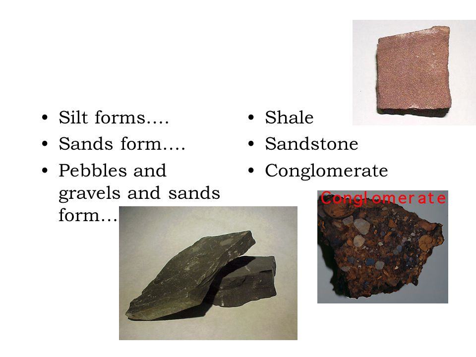 Silt forms…. Sands form…. Pebbles and gravels and sands form… Shale Sandstone Conglomerate
