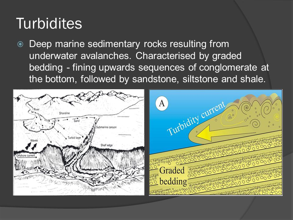 Turbidites  Deep marine sedimentary rocks resulting from underwater avalanches.