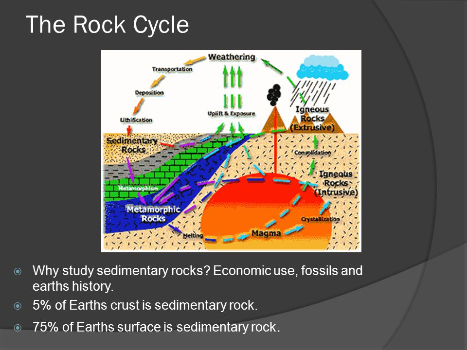 Sedimentary Processes  Formed from sediments of pre-existing rocks (i.e.