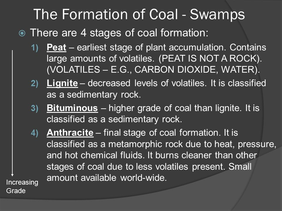 The Formation of Coal - Swamps  There are 4 stages of coal formation: 1) Peat – earliest stage of plant accumulation.