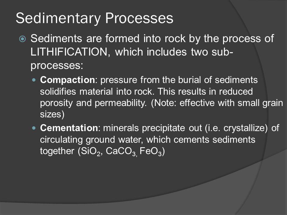 Turbidites  Deep marine sedimentary rocks resulting from underwater avalanches.