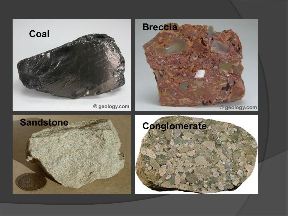 Coal Breccia Sandstone Conglomerate