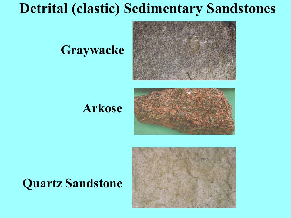 Detrital (Clastic) Sedimentary Rocks Larger grained Conglomerate Breccia