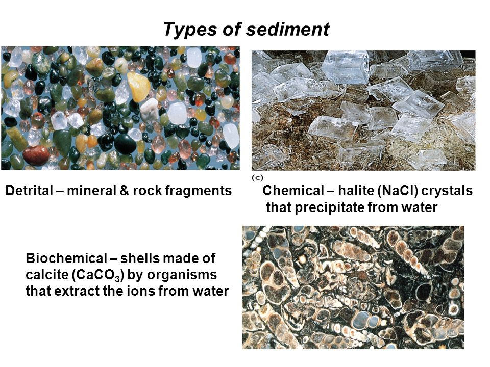 Types of sediment Detrital – mineral & rock fragments Chemical – halite (NaCl) crystals that precipitate from water Biochemical – shells made of calci