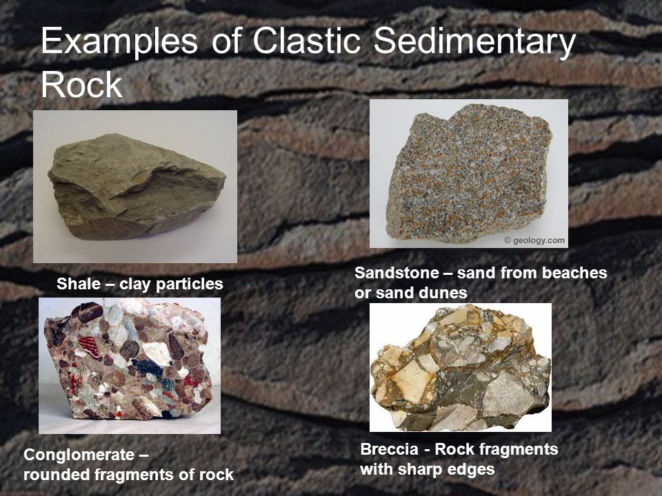 Examples of Clastic Sedimentary Rock Shale – clay particles Sandstone – sand from beaches or sand dunes Conglomerate – rounded fragments of rock Breccia - Rock fragments with sharp edges