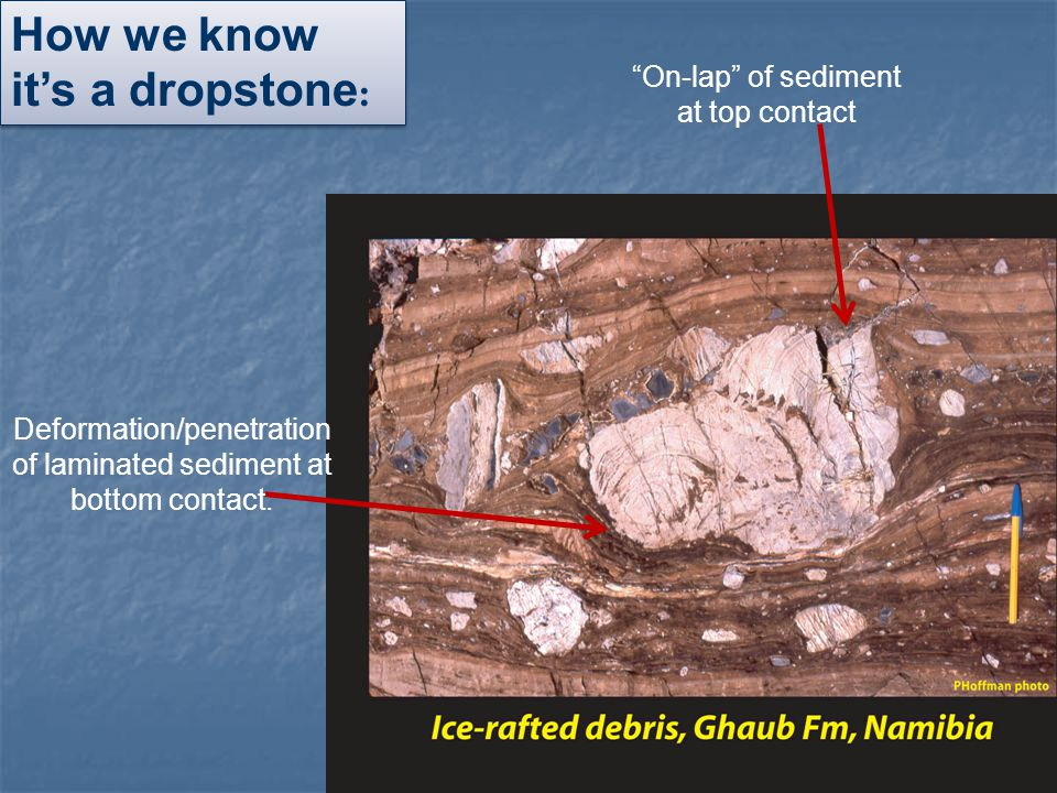 """How we know it's a dropstone : Deformation/penetration of laminated sediment at bottom contact. """"On-lap"""" of sediment at top contact"""