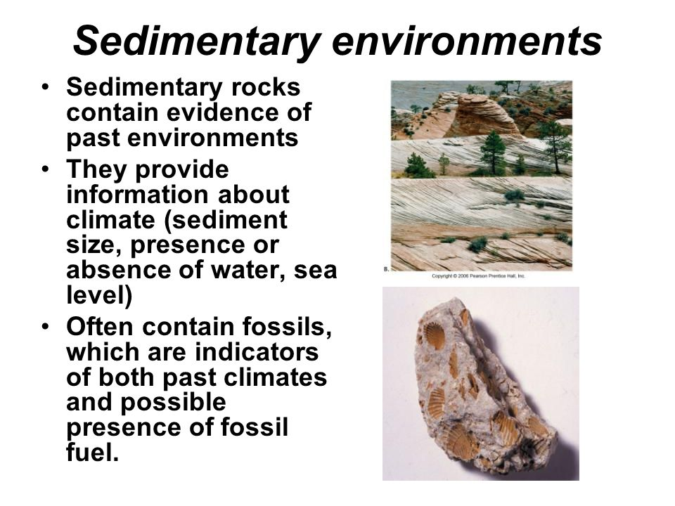 Sedimentary environments Sedimentary rocks contain evidence of past environments They provide information about climate (sediment size, presence or absence of water, sea level) Often contain fossils, which are indicators of both past climates and possible presence of fossil fuel.