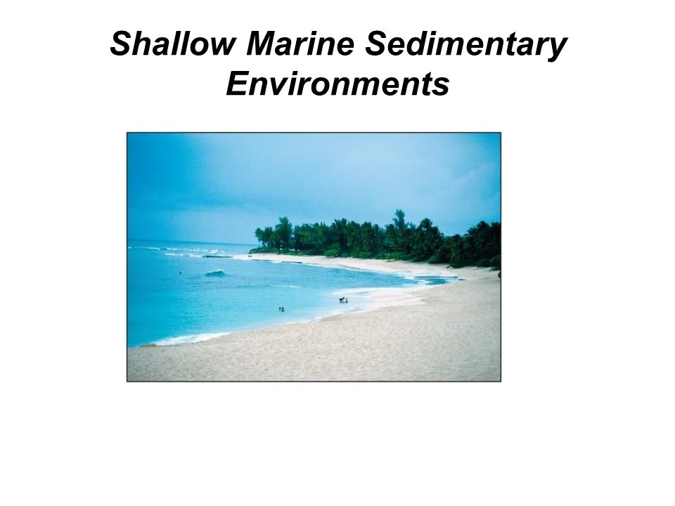 Shallow Marine Sedimentary Environments