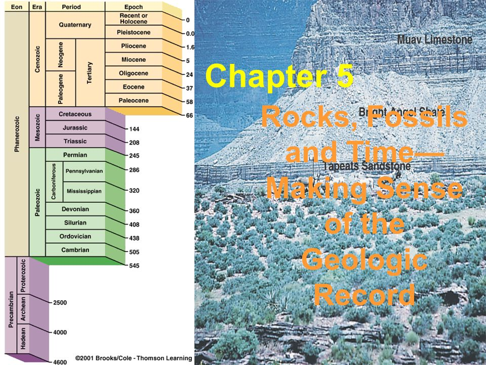 Stratigraphy deals with the study of any layered (stratified) rock, but primarily with sedimentary rocks and their composition origin age relationships geographic extent Many igneous rocks –such as a succession of lava flows or ash beds are stratified and obey the principles of stratigraphy Many metamorphic rocks are stratified Stratigraphy