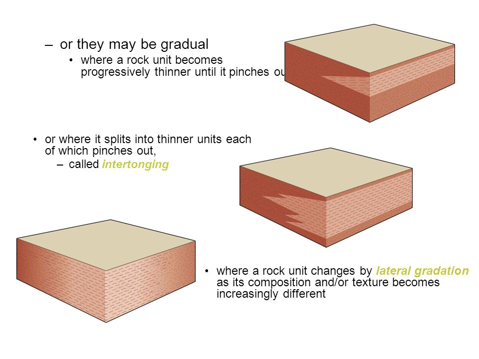 –or they may be gradual where a rock unit becomes progressively thinner until it pinches out or where it splits into thinner units each of which pinch