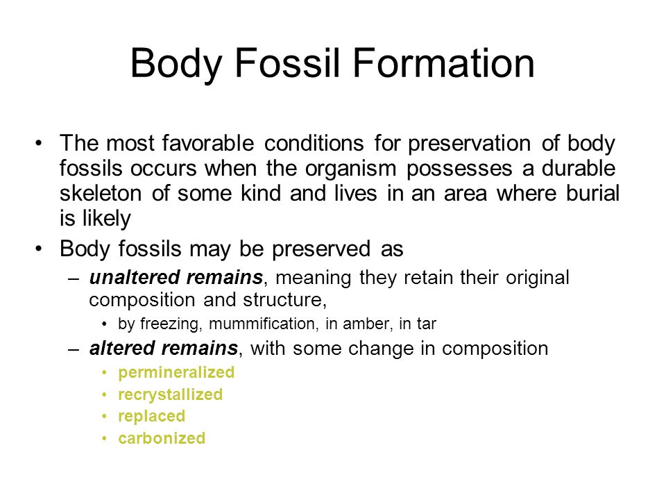 The most favorable conditions for preservation of body fossils occurs when the organism possesses a durable skeleton of some kind and lives in an area