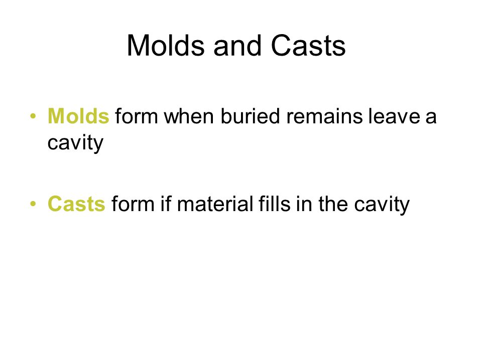 Molds form when buried remains leave a cavity Casts form if material fills in the cavity Molds and Casts