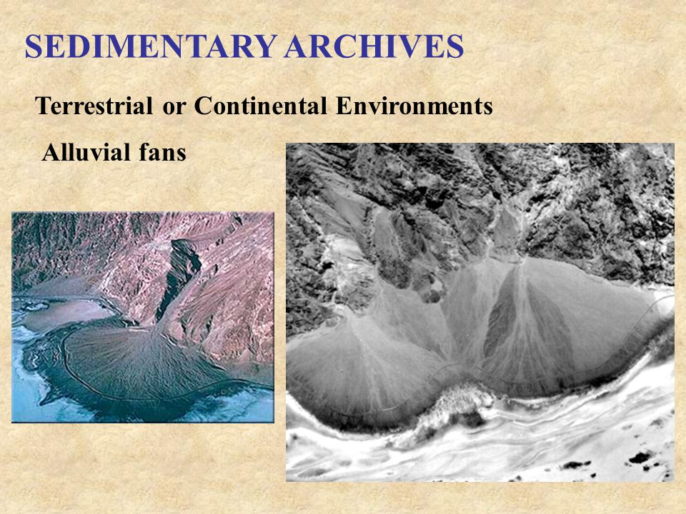 SEDIMENTARY ARCHIVES Terrestrial or Continental Environments Alluvial fans