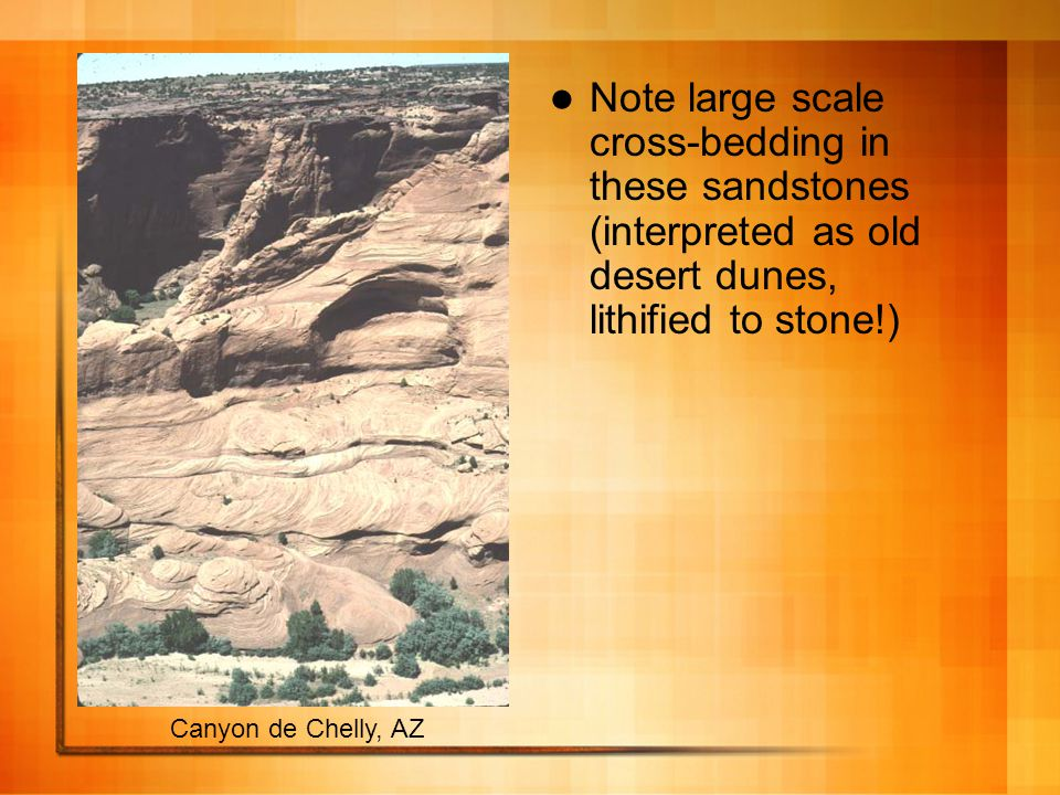 Note large scale cross-bedding in these sandstones (interpreted as old desert dunes, lithified to stone!) Canyon de Chelly, AZ