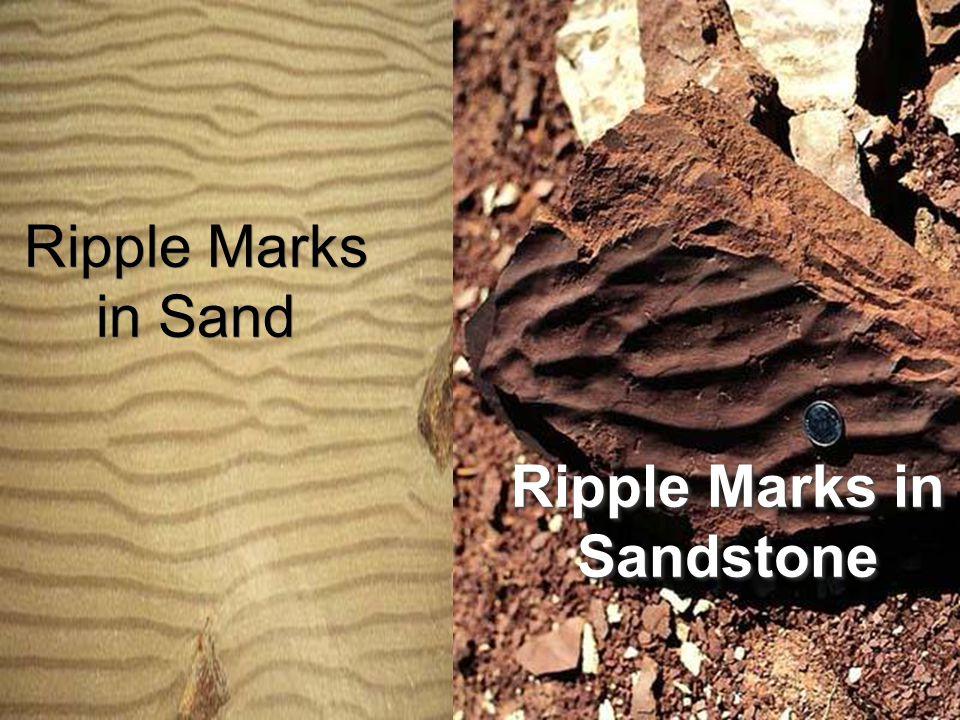 Ripple Marks in Sand Ripple Marks in Sandstone