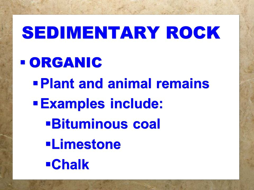 SEDIMENTARY ROCK  ORGANIC  Plant and animal remains  Examples include:  Bituminous coal  Limestone  Chalk  ORGANIC  Plant and animal remains  Examples include:  Bituminous coal  Limestone  Chalk