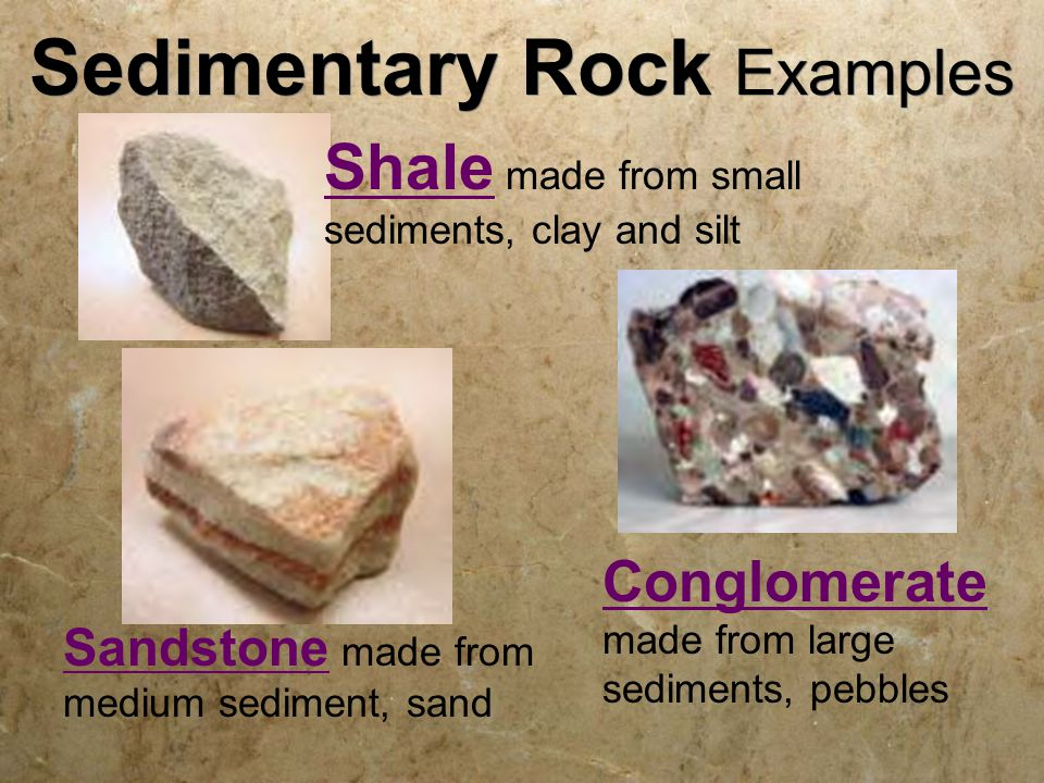 Sedimentary Rock Examples Sandstone made from medium sediment, sand Conglomerate made from large sediments, pebbles Shale made from small sediments, clay and silt
