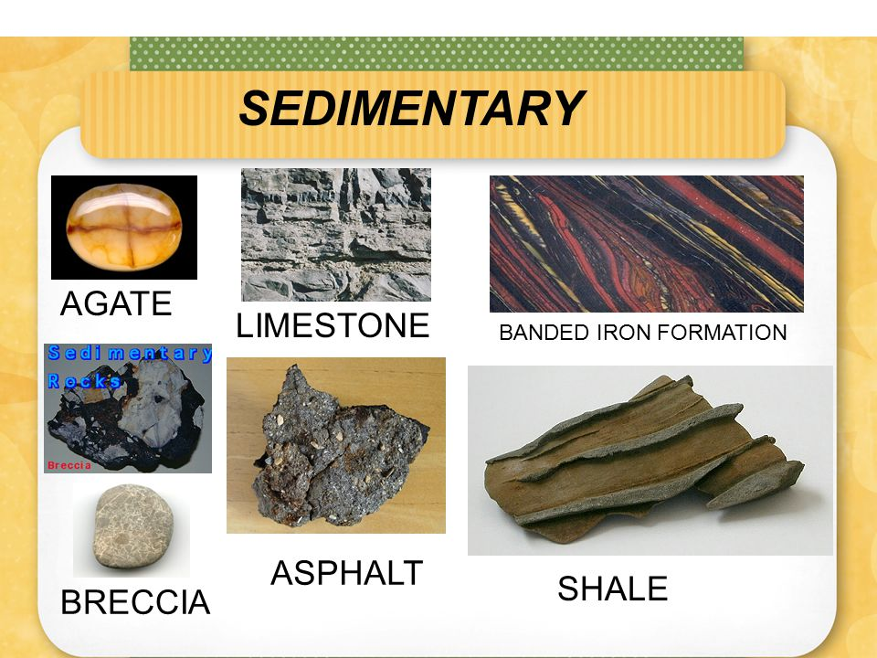 FOLIATED METAMORPHIC ROCKS Foliated rocks form when mineral grains flatten and line up in parallel layers.