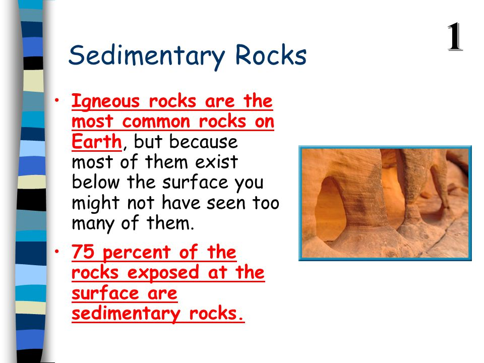 Sedimentary Rocks Igneous rocks are the most common rocks on Earth, but because most of them exist below the surface you might not have seen too many of them.