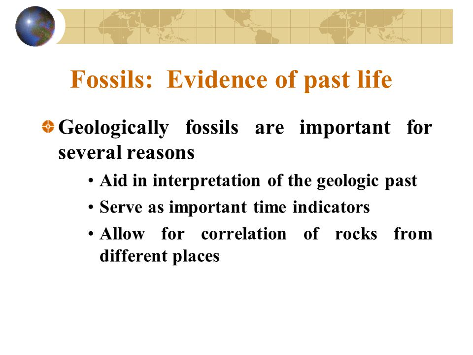 Fossils: Evidence of past life Geologically fossils are important for several reasons Aid in interpretation of the geologic past Serve as important ti