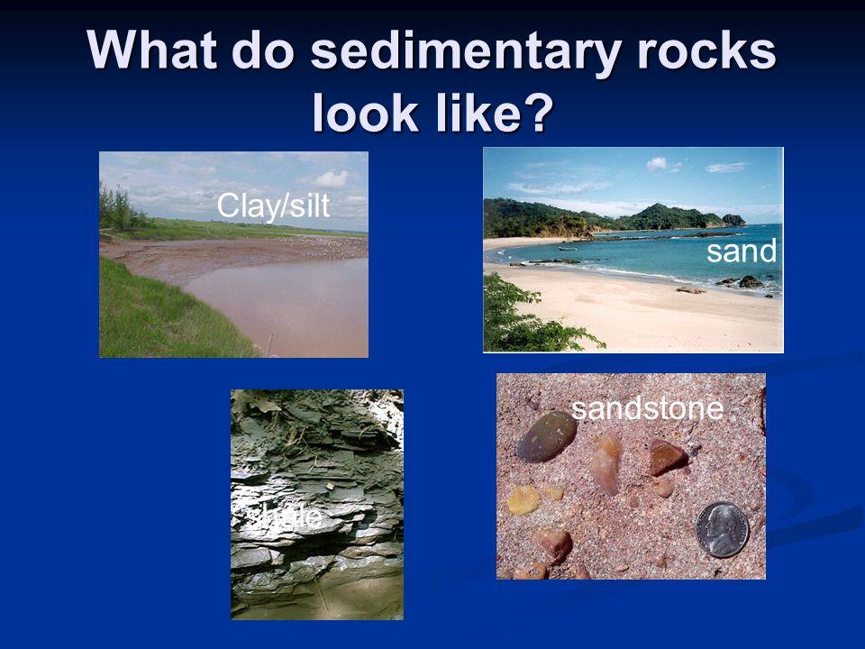 What do sedimentary rocks look like Clay/silt shale sand sandstone