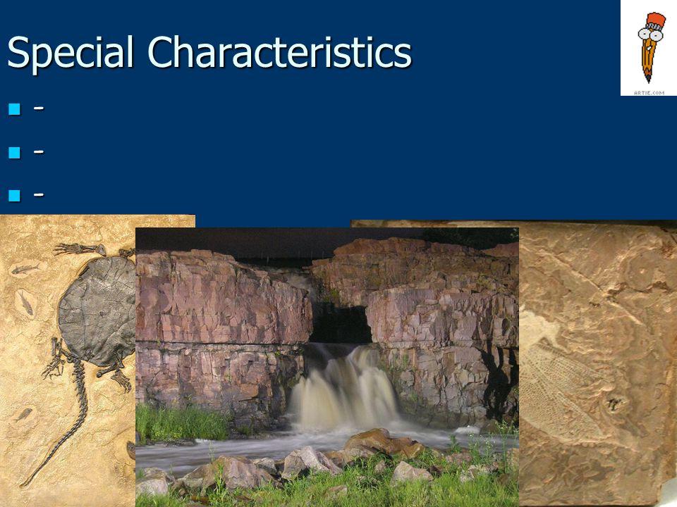 Special Characteristics - - -