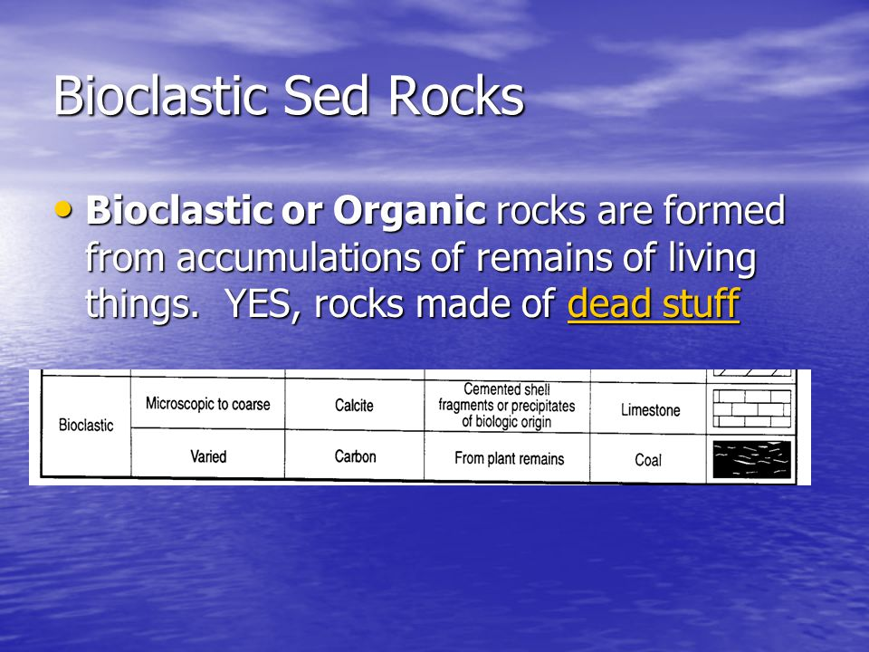 Sed Rocks – Secondary Features Secondary Sedimentary Features: see these in a rock and it's probably sedimentary.