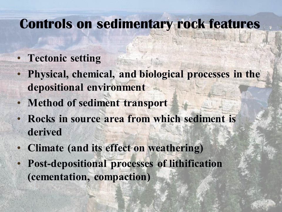 Controls on sedimentary rock features Tectonic setting Physical, chemical, and biological processes in the depositional environment Method of sediment