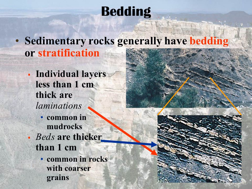 Sedimentary rocks generally have bedding or stratification Bedding  Individual layers less than 1 cm thick are laminations common in mudrocks  Beds