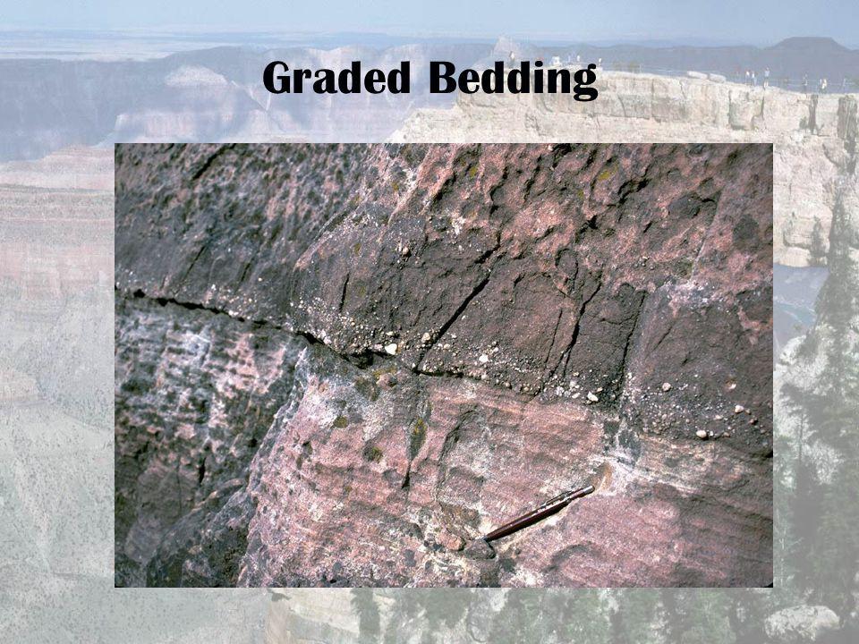 Graded Bedding