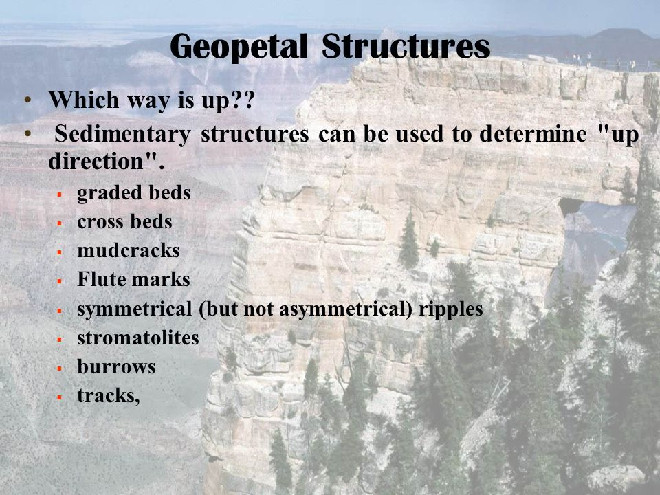 Geopetal Structures Which way is up?? Sedimentary structures can be used to determine