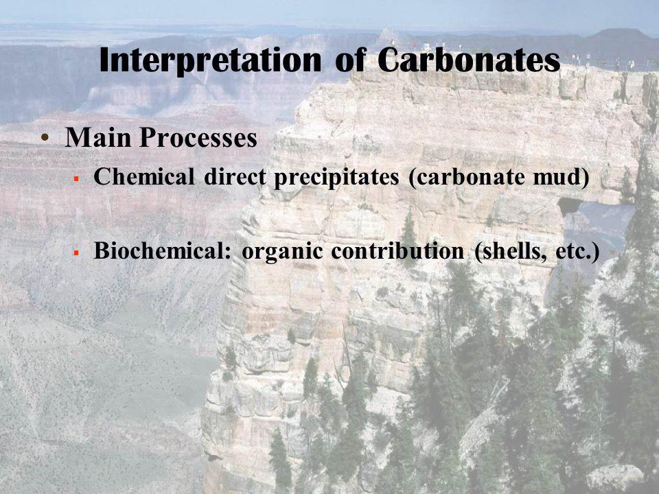 Interpretation of Carbonates Main Processes  Chemical direct precipitates (carbonate mud)  Biochemical: organic contribution (shells, etc.)