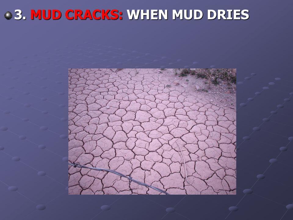 3. MUD CRACKS: WHEN MUD DRIES