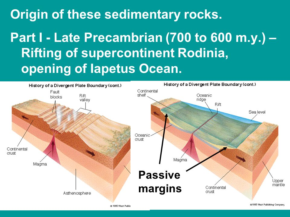 Origin of these sedimentary rocks.
