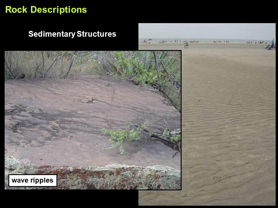 wave ripples Rock Descriptions Sedimentary Structures