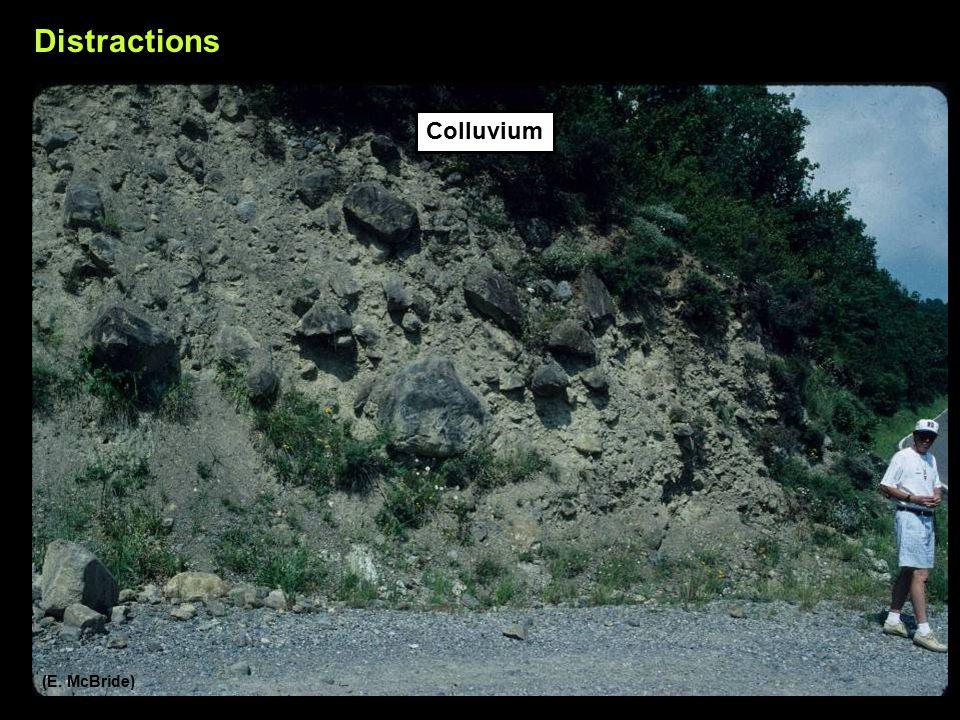 Distractions (E. McBride) Colluvium
