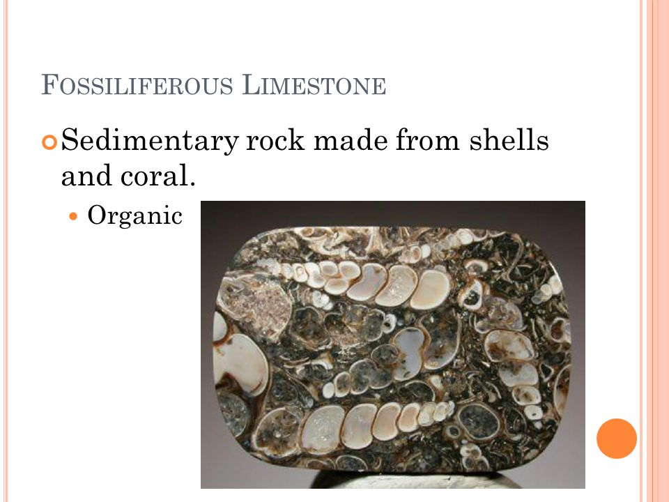 F OSSILIFEROUS L IMESTONE Sedimentary rock made from shells and coral. Organic