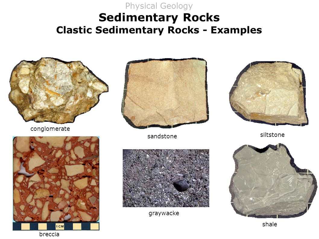 Sedimentary Rocks Clastic Sedimentary Rocks - Examples conglomerate breccia sandstone graywacke siltstone shale Physical Geology