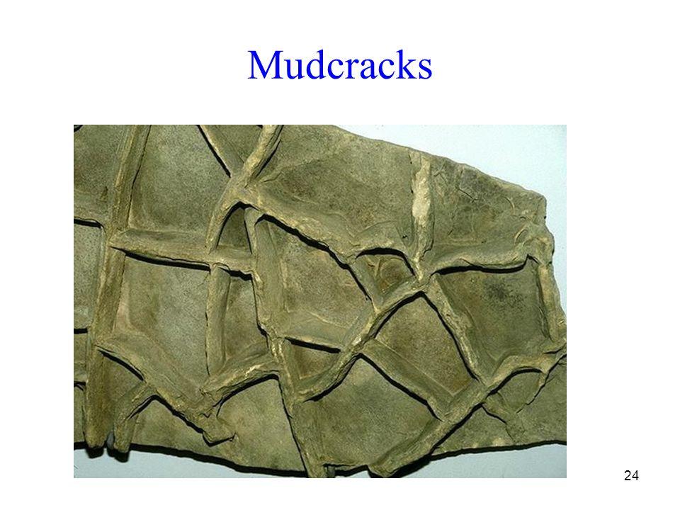 24 Mudcracks