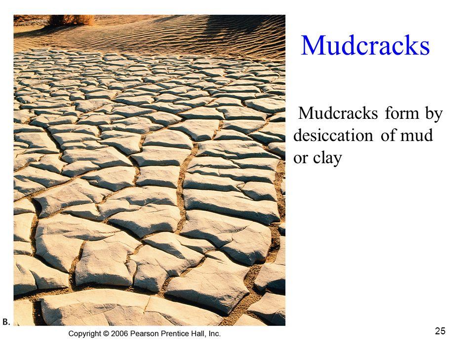25 Mudcracks Mudcracks form by desiccation of mud or clay