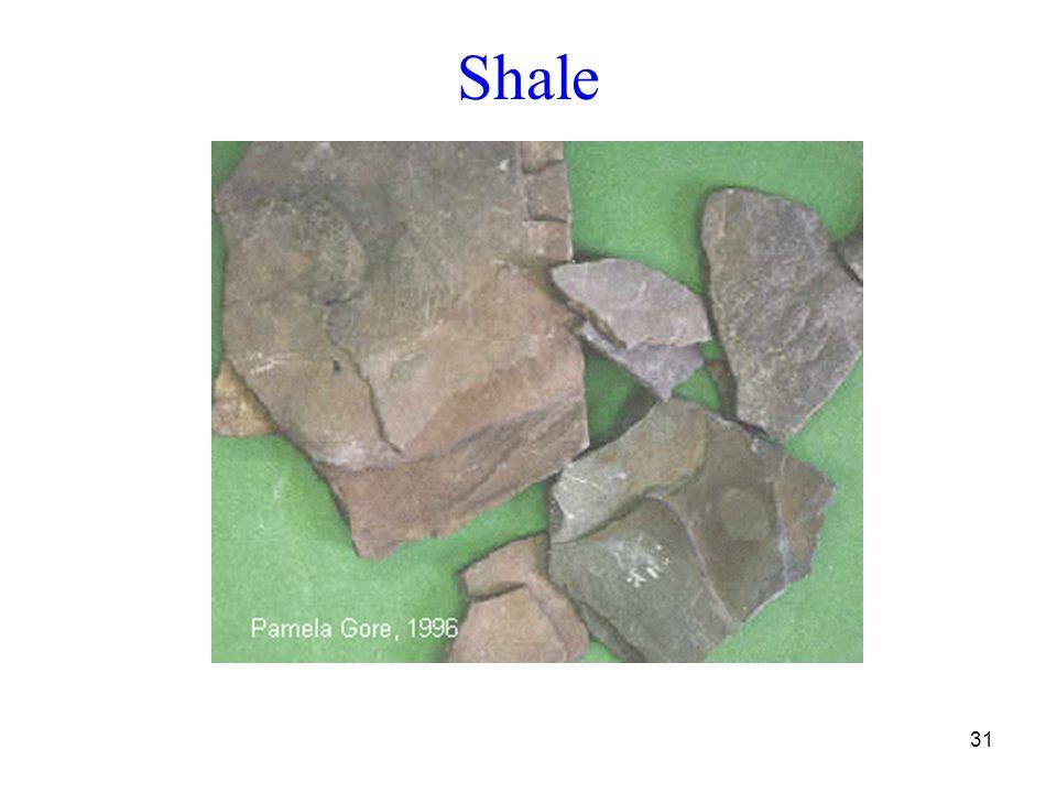 31 Shale