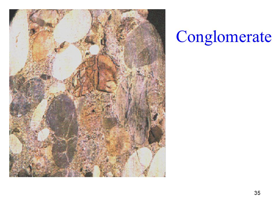35 Conglomerate