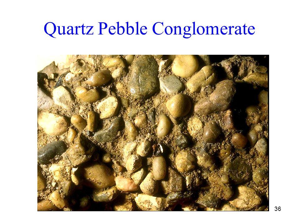 36 Quartz Pebble Conglomerate