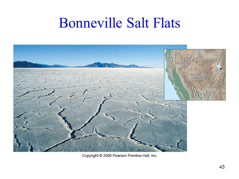 Bonneville Salt Flats 43