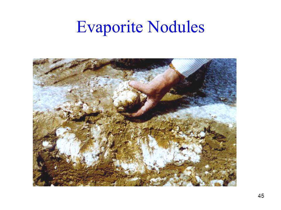 45 Evaporite Nodules