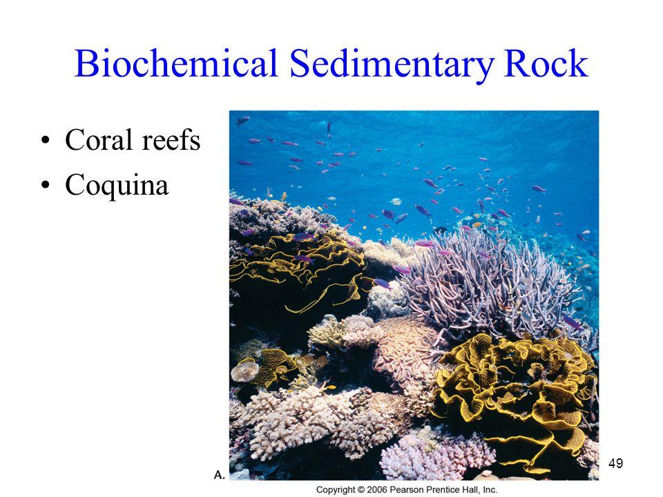49 Biochemical Sedimentary Rock Coral reefs Coquina