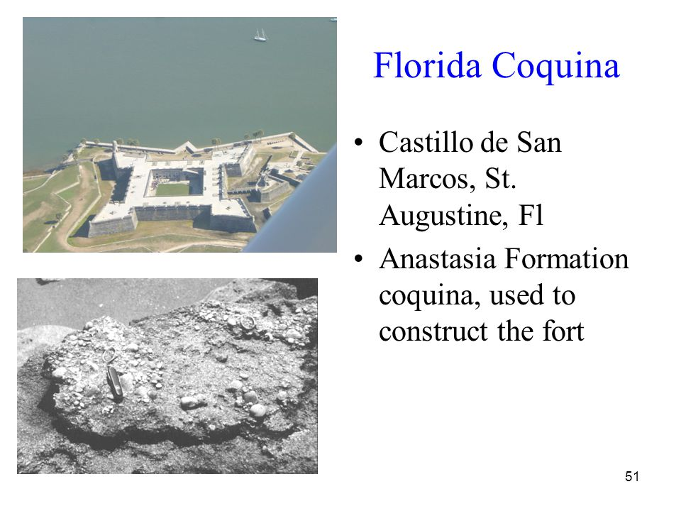 51 Florida Coquina Castillo de San Marcos, St. Augustine, Fl Anastasia Formation coquina, used to construct the fort