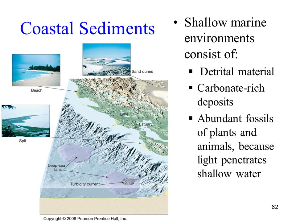 62 Coastal Sediments Shallow marine environments consist of:  Detrital material  Carbonate-rich deposits  Abundant fossils of plants and animals, because light penetrates shallow water